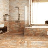 Barthroom Ceramic Wall Tile JAP11480